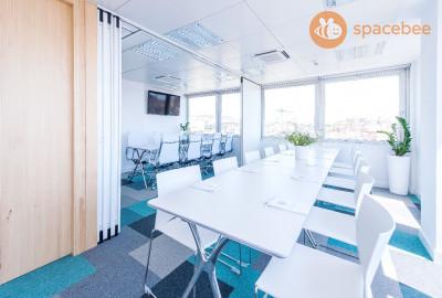 Sala de reunión de lujo capacidad 12-14 personas