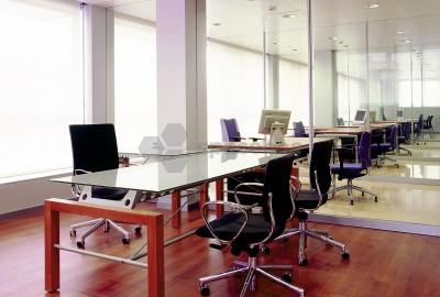 Despacho individual o doble en centro de negocios
